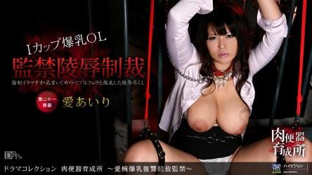 1pon-112410_973 「肉便器育成所 〜愛椀爆乳復讐拉致監禁〜」