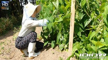 Paco-112610_248 働く地方のお母さん 〜農業を営む未亡人 前編〜
